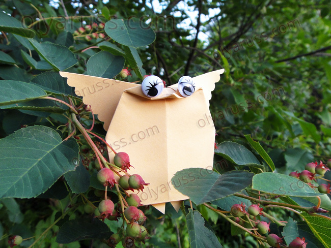 Сова из бумаги - как сделать оригами птицу